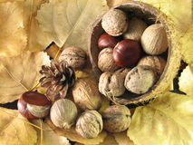 Free Assorted Nuts Stock Image - 11966691