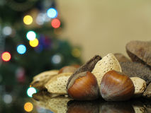Assorted Nuts. With blurred lights from a Christmas tree in the background royalty free stock photo
