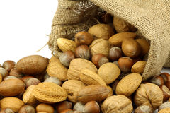 Assorted nuts coming out of a burlap sack Stock Image