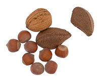 Assorted nuts isolated on white - hazel, brazil and walnut Royalty Free Stock Images