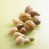 Assorted Nuts in Shell Royalty Free Stock Photos