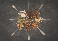 Assorted nuts in spoons Royalty Free Stock Photo