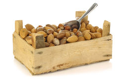 Assorted nuts in a wooden box Stock Images