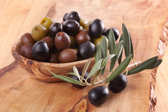 Assorted olives Stock Photos