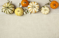 Assorted orange and white pumpkins on textured white fabric background. Horizontal image with copy space. Miniature pumpkins on rustic wood and burlap cloth Stock Images