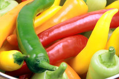 Assorted organic peppers Stock Image