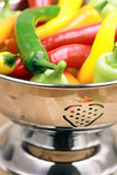 Assorted organic peppers Stock Images