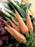 Assorted organic vegetables Stock Photo