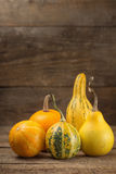 Assorted Ornamental Gourds Stock Photo