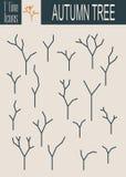 Assorted Outlined Tree Icon Set Isolated. Autumn Season Stock Photo