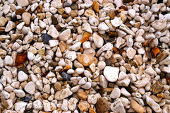 Assorted pebbles. Assorted coloured pebbles on a shore for a background of natural material Royalty Free Stock Photos