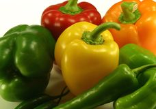 Assorted Pepper Plants. Red, Green, Yellow and Orange Pepper Plants royalty free stock photo
