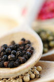 Assorted peppercorns Stock Images