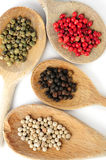Assorted peppercorns. Four kinds of peppercorns in wooden cooking spoons Royalty Free Stock Photo