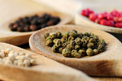 Assorted peppercorns Stock Image