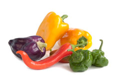 Assorted peppers Royalty Free Stock Photography