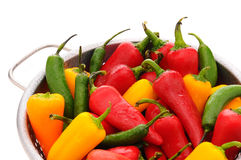 Assorted peppers in colander Stock Image