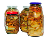 Assorted pickled mushrooms. Lactarius resimus and Lactarius deliciosus Royalty Free Stock Photos