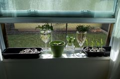 Assorted plants growing on windowsill stock photography