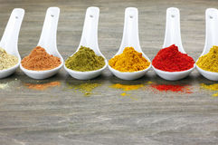 Assorted powder spices Stock Images