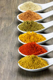 Assorted powder spices Royalty Free Stock Image