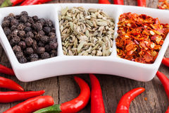 Assorted powder spices Royalty Free Stock Photo