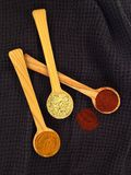 Assorted powder spices Stock Photography