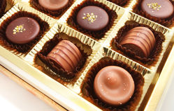 Assorted Pralines in the box Stock Photography