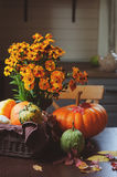 Assorted pumpkins and squash picked up in basket at country house with seasonal flowers Royalty Free Stock Image