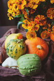 Assorted pumpkins and squash picked up in basket at country house with seasonal flowers Stock Images