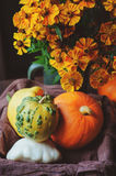 Assorted pumpkins and squash picked up in basket at country house with seasonal flowers Stock Photos