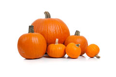 Assorted pumpkins with straw on white Stock Images