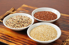 Assorted quinoa Stock Image