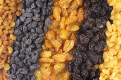Assorted raisins Stock Photography