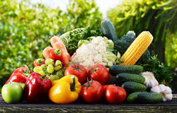 Assorted raw organic vegetables in the garden Stock Photo
