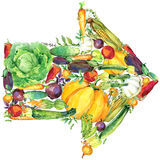 Assorted raw organic vegetables. watercolor illustration. watercolor vegetables and herbs background Stock Photo
