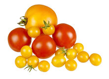 Assorted red and yellow fresh tomatoes, isolated. Large orange yellow Brandywine tomato, with typical red salad tomatoes and some small, yellow cherry ones for stock images