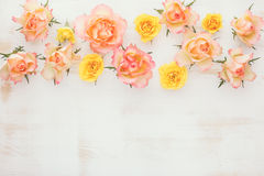 Assorted roses heads with dew stock images
