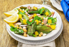 Assorted salad with arugula, spinach, chard Royalty Free Stock Images