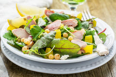 Assorted salad with arugula, spinach, chard Royalty Free Stock Image