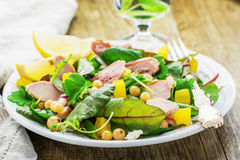 Assorted salad with arugula, spinach, chard Royalty Free Stock Photos
