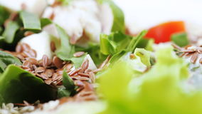 Assorted salad on lettuce leaves stock video