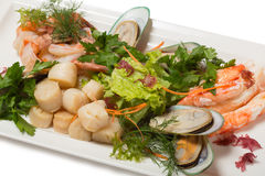Assorted sea scallops, crab, mussels, tiger shrimp Royalty Free Stock Photos