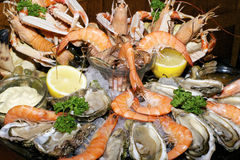 Assorted seafood Stock Photo