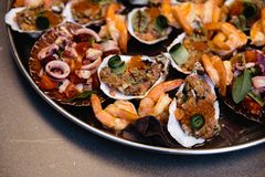 Assorted seafood, mussels, squid, scallops, salmon fillet and tiger shrimps with garlic creamy sauce, parmesan cheese royalty free stock images