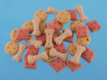 Assorted shaped dog biscuits on a blue background. Royalty Free Stock Image