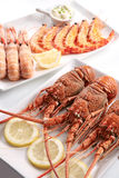 Assorted shellfish Stock Images