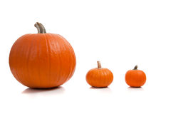Assorted sizes of pumpkins on a white background Stock Photo