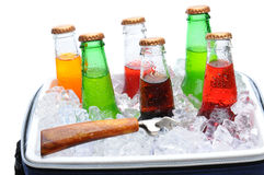 Assorted Soda Bottles in Ice Chest Royalty Free Stock Image