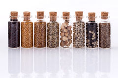 Assorted of spice bottles condiment  . Royalty Free Stock Photography